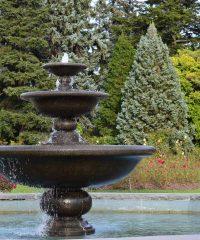 Blog Piscine & Jardins